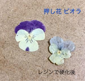 レジュフラワー,押し花